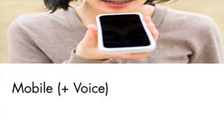 Mobile plus voice